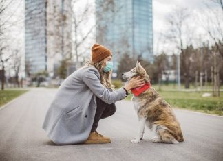Pet therapy: a cosa serve