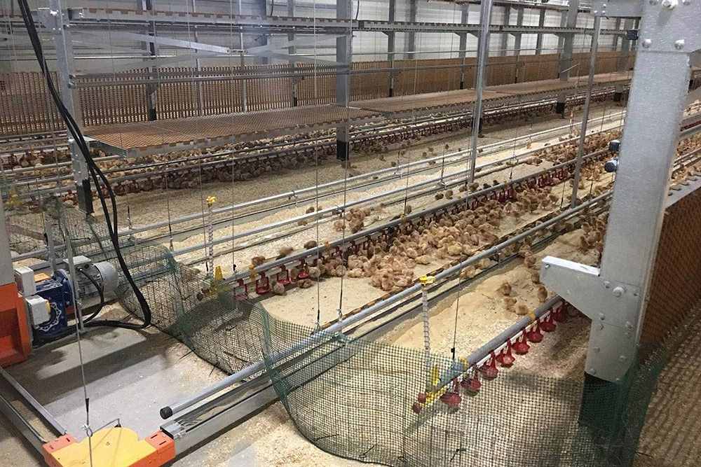 poultry aviaries - aviaries for laying hens - aviary system free range - aviary poultry systems-6