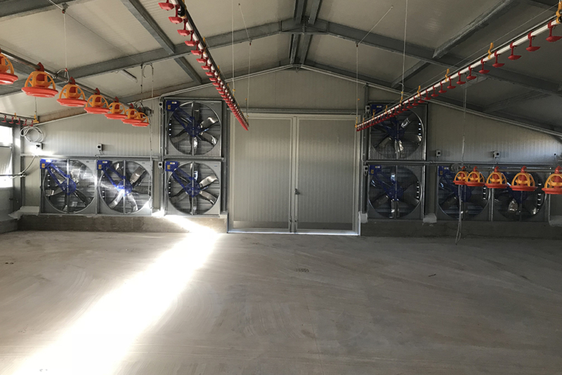 poultry houses - commercial free range poultry housing - poultry shed builders - poultry housing systems-12